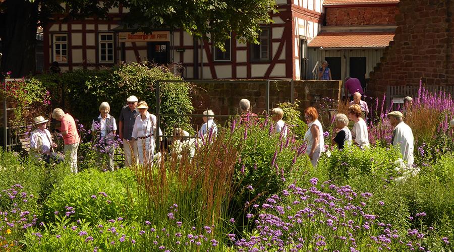 Gartentour der Frankfurter Allgemeine Zeitung am 17.07.2016